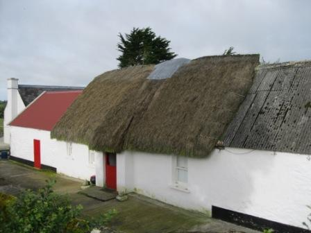 179 - Thatched cottage near Horistown