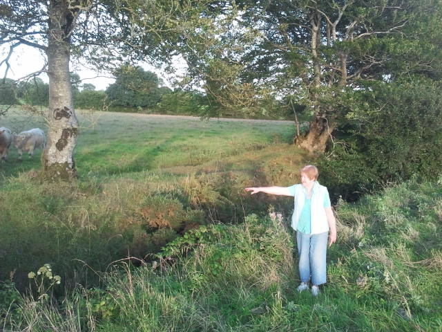 222 - Marie Cosgrave at Double Beech Ditch