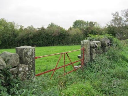 29 - Gate at Nobber